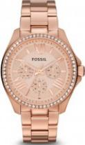 Fossil AM 4483