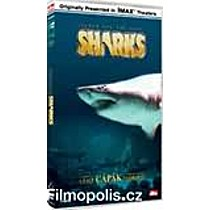 Pátrání po velkém žralokovi DVD (Search for the Great Sharks)