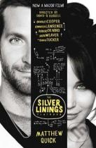 Matthew Quick: The Silver Linings Playbook