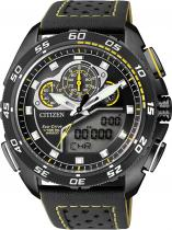 Citizen JW0125-00E Promaster Land