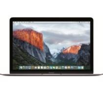 Apple MacBook 12 (MLH72CZ/A)