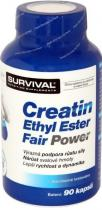 SURVIVAL Creatin Ethyl Ester Fair Power 90 kapslí