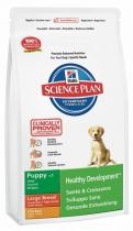 Hill's Canine Dry Puppy Growth Large Breed 2,5 kg