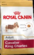 Royal Canin Kavalír King Charles 1,5kg