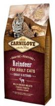 Carnilove Reindeer for Adult Energy Outdoor 6kg