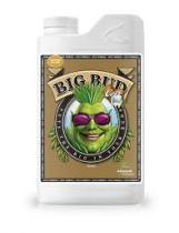Big Bud Coco Liquid 500 ml