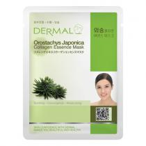 DERMAL Korea Orostachys Japonica Collagen Essence Mask