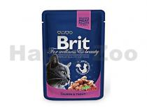 Brit Brit Premium Cat kapsa with Salmon & Trout 100g