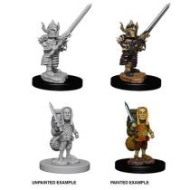Wizards of the Coast Dungeons & Dragons: Nolzur s Miniatures Male Halfling Fighter