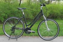 Thomus Dreambike Low