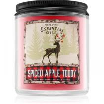 Bath & Body Works Spiced Apple Toddy III. 198 g