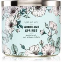 Bath & Body Works Woodland Springs 411 g