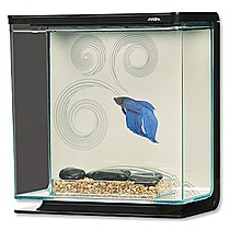 Hagen Marina Betta Kit Zen 3 l