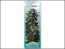 Rostlina Red Ludwigia Plus 30 cm