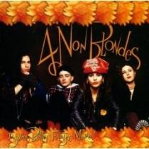 Bigger Better Faster More - 4 Non Blondes