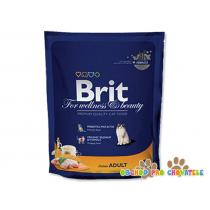 BRIT Premium Cat Chicken 800g